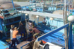 Phú Yên quyết tâm xóa 'thẻ vàng' đối với thủy sản