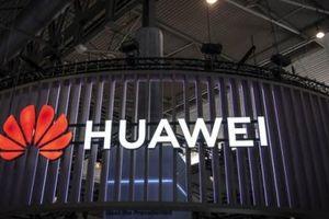 Trung Quốc cảnh báo hậu quả nghiêm trọng đối với các công ty 'hùa theo Mỹ'