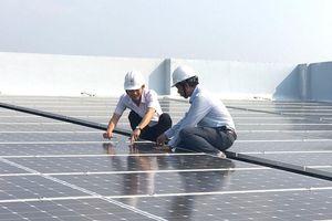 Hơn 500 MWp điện mặt trời hòa lưới Phú Yên