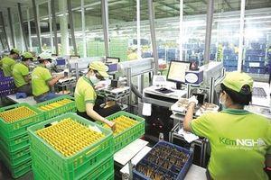 Kinh tế tư nhân: Cần siêu tập đoàn?