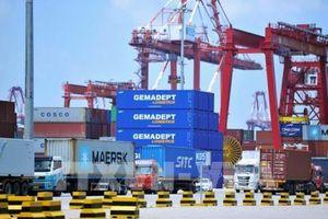 Xuất khẩu của Trung Quốc bất ngờ phục hồi tăng trưởng trong tháng Năm