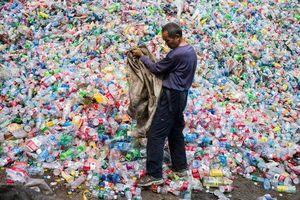 Các nhà khoa học đánh giá mức độ vi hạt nhựa mà con người nuốt vào cơ thể