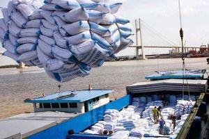 Gạo Việt 'kẹt đường' sang Trung Quốc