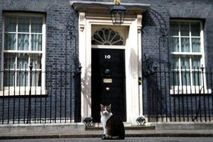 Hơn nửa dân Anh không tin tưởng người kế nhiệm bà May