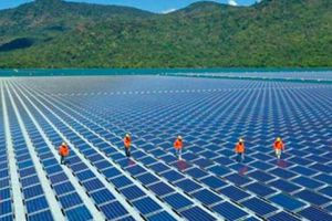 EVN: Tạo điều kiện thuận lợi cho các dự án điện mặt trời