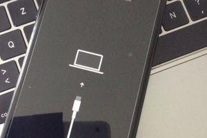 iPhone 11 được dự đoán bỏ cổng Lightning, dùng cổng USB-C
