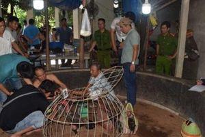 Thừa Thiên – Huế: Bắt quả tang hàng chục đối tượng đánh bạc dưới hình thức đá gà