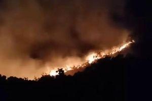 Cháy lớn trên bán đảo Sơn Trà