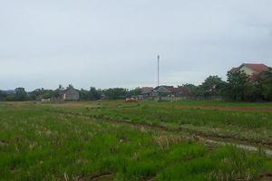 Huyện Hưng Nguyên (Nghệ An): Chưa xây xong hạ tầng đã chuẩn bị đấu giá đất