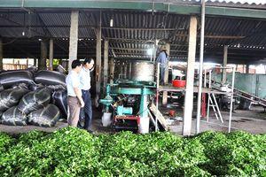 Nghệ An: Gần 100.000 tỷ đồng cho vay phát triển nông nghiệp, nông thôn