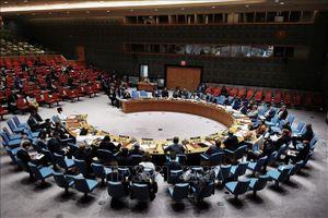Báo Nga đánh giá Việt Nam sẽ là ủy viên xuất sắc của Hội đồng Bảo an Liên hợp quốc