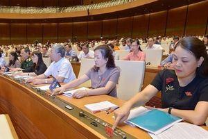Trình Quốc hội thông qua Luật Đất đai sửa đổi vào cuối 2020