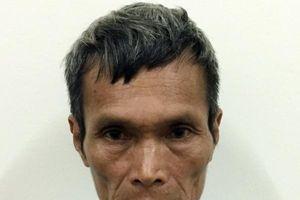 Quảng Ninh: Phá 3,3ha rừng phòng hộ, 3 bố con bị khởi tố