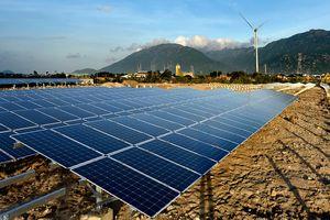 Vận hành 57 nhà máy điện mặt trời và điện gió