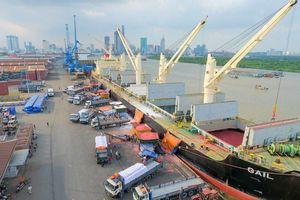 Thủ tướng yêu cầu báo cáo tình trạng 'bến nhiều hơn cảng'