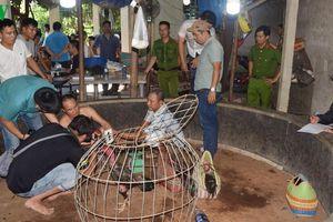 Phá trường gà tại Thừa Thiên Huế, thu giữ hơn 130 triệu đồng