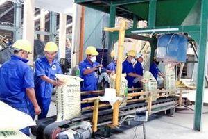Quảng Trị: Đầu tư Nhà máy sản xuất phân bón và khai thác than bùn công suất 24.500 tấn/năm