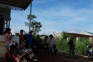 Dân khổ vì sống cạnh khu chăn nuôi