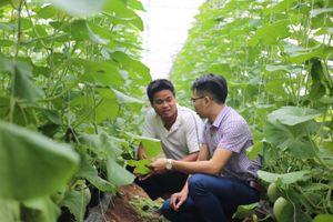 Phát triển nông nghiệp công nghệ cao: Vẫn đói vốn, khát quỹ đất