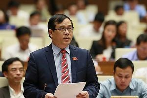 ĐBQH đề xuất công dân khi ra nước ngoài phải nộp 'phí chia tay'