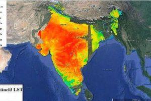 Nắng nóng 50 độ, đã có người thiệt mạng ở Ấn Độ