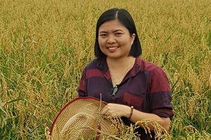 Ước mơ nông sản sạch của cô giám đốc trên cánh đồng ruộng rươi