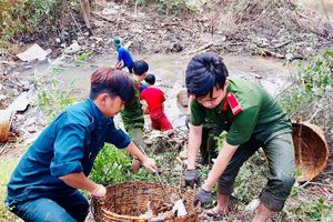 Sáng tạo để thu hút thanh niên tham gia tình nguyện