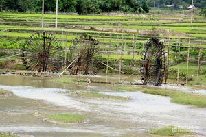 'Máy bơm' bằng tre chống hạn cho nhiều vùng cao Nghệ An
