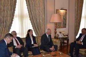 Ai Cập khẳng định lại lập trường về vấn đề khủng hoảng Syria