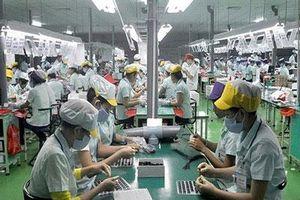 Năng lực xuất khẩu của doanh nghiệp Việt đang dần cải thiện