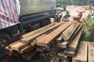 Bắc Kạn: 41 cây gỗ nhóm IIA hơn 100m3 bị chặt