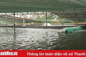 Ghi nhận về xây dựng nông thôn mới ở xã Hoằng Hà