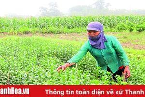 Những vấn đề đặt ra trong công tác đào tạo, nâng cao chất lượng lao động nông nghiệp