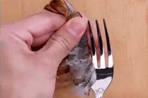 Lột vỏ tôm sống bằng dĩa và mẹo bóc tỏi, nhặt rau nhanh cho hội lười