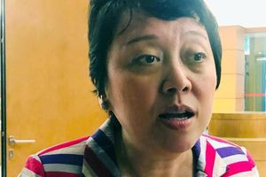 Bà Phạm Khánh Phong Lan: Hoàng Công Lương nhận tội vì 'quá mệt mỏi', muốn buông bỏ