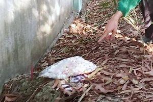 Vụ phát hiện hơn 300 thi thể thai nhi ở nhà máy rác Cà Mau: Bộ Y tế vào cuộc