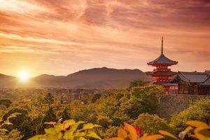 7 điều mách bạn về thẻ tàu giá rẻ ở Nhật Bản