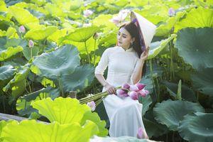 Những đầm sen tuyệt đẹp quanh Hà Nội nhất định phải check-in một lần