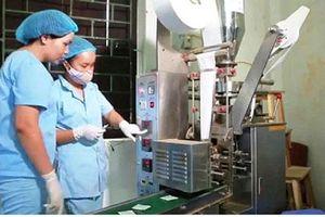 Hà Nội hỗ trợ trên 844 tỷ đồng vốn vay phát triển cho các hợp tác xã