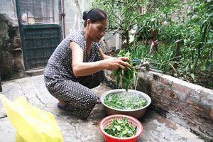 100% dân nông thôn Hà Nội được dùng nước sinh hoạt đảm bảo vệ sinh