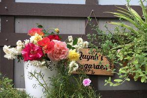 Góc vườn bình yên với rau sạch và hoa hồng của bà mẹ Hà Nội đam mê làm bánh