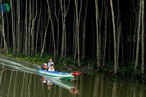 Sai phạm tiền tỷ tại Vườn quốc gia Mũi Cà Mau, ai chịu trách nhiệm?