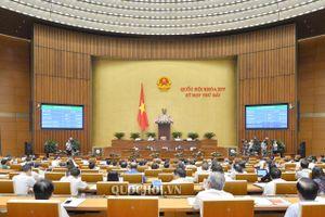 Quốc hội thông qua quy định nghiêm cấm lái xe sau khi uống rượu, bia