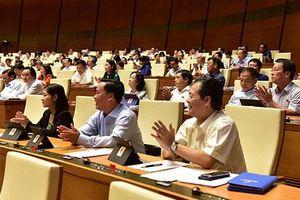 Hơn 91% ĐBQH biểu quyết tán thành thông qua Luật Thi hành án hình sự (sửa đổi)