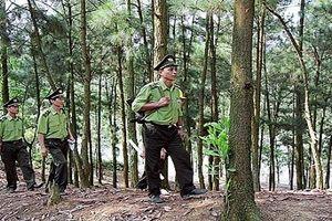 Cán bộ kiểm lâm mất tích bí ẩn trong rừng