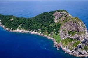 Ilha da Queimada Grande: Hòn đảo nguy hiểm nhất thế giới