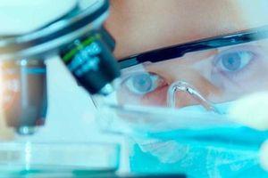 Mỹ ngăn giới khoa học tham gia chương trình thu hút nhân tài tranh cãi