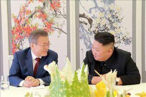 Tổng thống Hàn Quốc: Hội nghị thượng đỉnh liên Triều không phải là bất khả thi