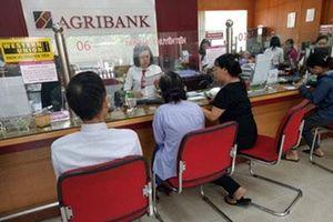 Agribank tăng khả năng tiếp cận vốn của khách hàng thông qua tổ vay vốn