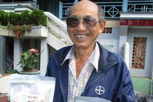 Đồng Tháp: Tuổi 72 đánh liều khởi nghiệp với giống gạo huyết rồng